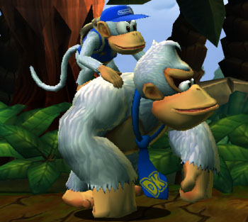 donkey kong country returns dolphin